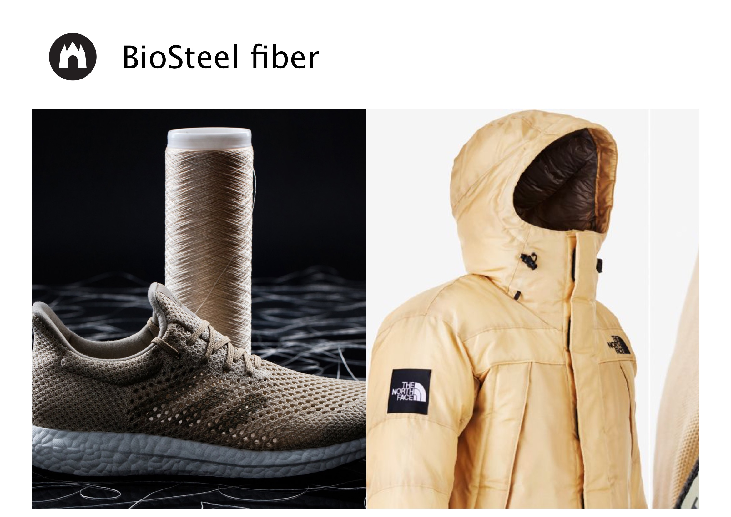 Image of BioSteel fiber